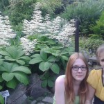 ogród11