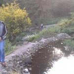 ogród3